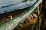 DD Hammock Sleeve - obal na hamaku